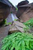 Het huilen van Rotsen in Zion National Park, Utah Royalty-vrije Stock Foto's