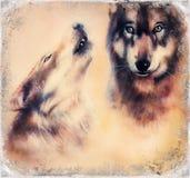 Het huilen Wolfs luchtpenseel het schilderen op van de achtergrond canvaskleur oogcontact stock illustratie