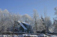 Het huis en de berijpte bomen Royalty-vrije Stock Afbeeldingen