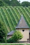Het huis en de wijngaard Royalty-vrije Stock Afbeeldingen