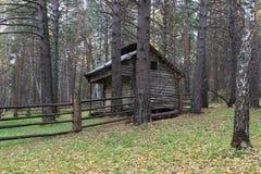 Het huis in het hout Royalty-vrije Stock Foto's