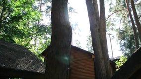 Het huis in het hout stock video