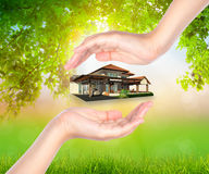 Het huis op vrouw overhandigt Groen blad royalty-vrije stock foto