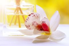 Het huis of het parfum van de aromalucht met orchidee royalty-vrije stock foto's