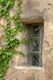 Het Huis van de adobe met Klimop royalty-vrije stock afbeelding