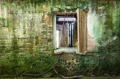 Het Huis van de Anpingsboom Dit oude pakhuis wordt behandeld door vertakt van oude Banyan-Boomtak die is royalty-vrije stock afbeelding
