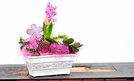 Het huis van de decoratie bloeit pot Stock Foto's