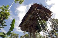 Het Huis van de Korowaiboom Royalty-vrije Stock Foto