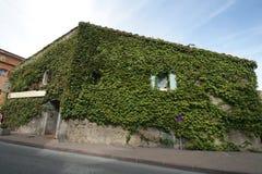 Het huis van de Provence dat door installaties wordt behandeld Stock Foto's