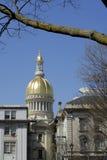 Het Huis van de Staat van New Jersey in Trenton Stock Foto