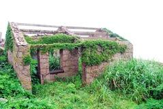 Het huis van de steen met installaties Stock Foto's
