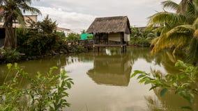 Het Huis van de Vietnamees-stijlboom op Mooie Groene Vijver met Kokospalmen en Tropische Installaties - Bezinning over Water stock foto's
