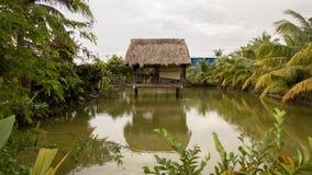 Het Huis van de Vietnamees-stijlboom op Mooie Groene Vijver met Kokospalmen en Tropische Installaties - Bezinning over Water stock afbeeldingen