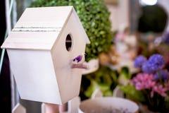 Het Huis van de vogel Stock Foto's