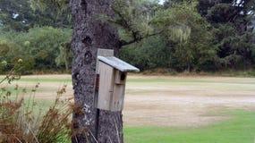 Het Huis van de vogel op een boom stock fotografie