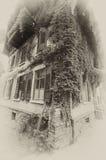 Het huis van de wijnstok in sepia Royalty-vrije Stock Afbeelding