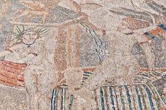 Het huis van het Gevolg van het Venus in Volubilis, Marokko Royalty-vrije Stock Afbeelding