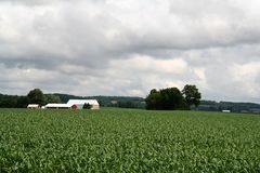 Het Huis van het landbouwbedrijf met Schuur op Heuvel stock fotografie