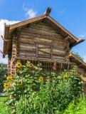 Het huis van het logboekkruid in Russische stijl Stock Afbeelding