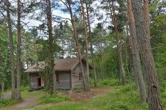 Het huis van het wildernisplattelandshuisje Stock Afbeelding