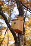 Het huis van vogels stock fotografie