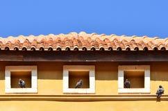 Het huis van vogels Royalty-vrije Stock Foto's