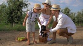 Het huisdier van de kindvreugde, ouders brengt weinig puppyhond in stromand als gift aan zoon in tuin stock videobeelden