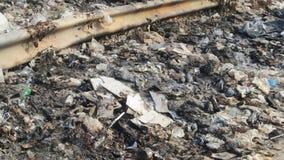 Het huisvuil van het milieuprobleem Stock Fotografie