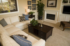 Het huiswoonkamer van de luxe Royalty-vrije Stock Afbeelding