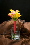 Het huwelijk bloeit bruids boeket Royalty-vrije Stock Foto