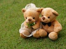 Het huwelijk draagt op het Gras Royalty-vrije Stock Afbeelding