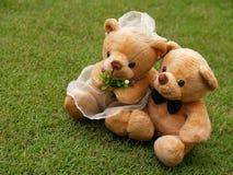 Het huwelijk draagt op het Gras Stock Afbeelding
