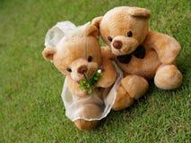 Het huwelijk draagt op het Gras Stock Afbeeldingen