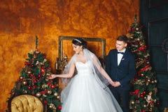 Het huwelijk van de winter Minnaarsbruid en bruidegom in Kerstmisdecoratie De Gift van de bruidegomholding Romantische verrassing royalty-vrije stock foto's