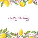 Het Huwelijk van het land het van letters voorzien en citroenen naadloos patroon in waterverfstijl Stock Afbeelding