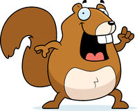 Het Idee van de eekhoorn Royalty-vrije Stock Foto's