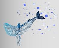 Het idee voor een tatoegering is een blauwe gradiëntwalvis Geometrische schets Stock Foto
