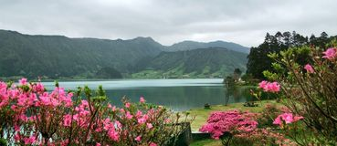 Het idyllische landschap van de Azoren Royalty-vrije Stock Foto's