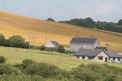 Het Ierse platteland leven Stock Afbeelding