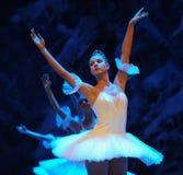 Het ijs en sneeuwt de elf-eerste handeling van het vierde Land van de gebiedssneeuw - de Balletnotekraker stock foto