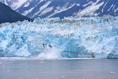 Het Ijs van Alaska Royalty-vrije Stock Foto