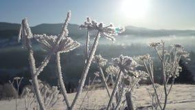 Het ijs van de de zonberg van de de winterlente stock footage