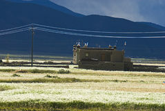 Het inbouwen van Tibetan landschap stock fotografie