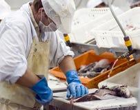 Het industriële vissen fileren stock afbeelding