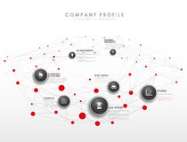 Het infographic malplaatje van het bedrijfprofiel Royalty-vrije Stock Afbeelding