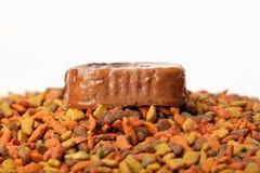 Het ingeblikte natte vlees van het huisdieren ruwe voedsel in leuke gele kom en kleurrijke kattenhondevoer in korrels Stock Afbeelding