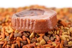 Het ingeblikte natte vlees van het huisdieren ruwe voedsel in leuke gele kom en kleurrijke kattenhondevoer in korrels Royalty-vrije Stock Afbeelding