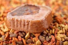 Het ingeblikte natte vlees van het huisdieren ruwe voedsel in leuke gele kom en kleurrijke kattenhondevoer in korrels Royalty-vrije Stock Fotografie