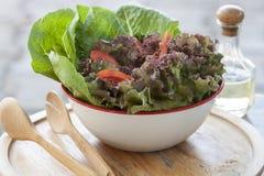 Het Ingrediënt van de salade Stock Fotografie