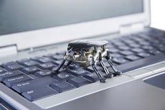 Het insect van de computer royalty-vrije stock fotografie